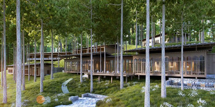 Bumthang - Forest within a Forest