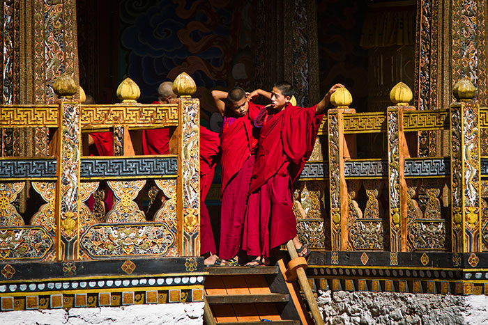 Young Monks at Punakha Dzong, Bhutan