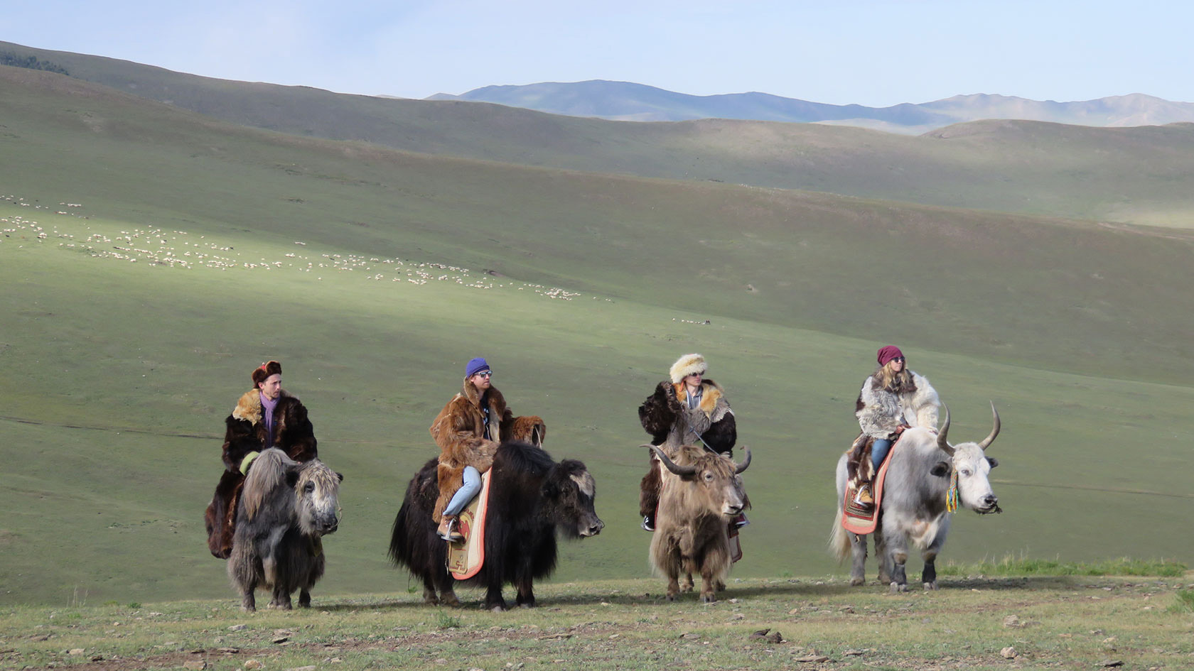 RIDING YAKS IN COSTUME IN MONGOLIA