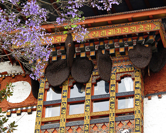 10 Facts about Bhutan