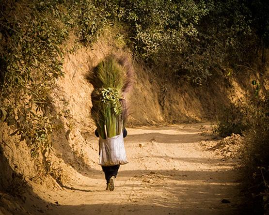Myanmar: Off the Beaten Track