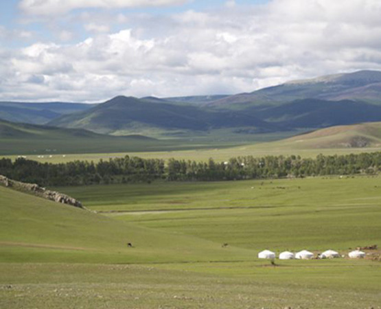 Accommodation styles in the Mongolian countryside